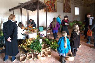 Visite costumée dans chateau de la loire - Rivau